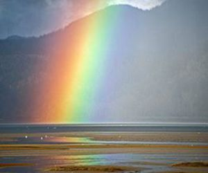 rainbow, nature, and photography image