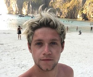 beach, handsome, and horan image