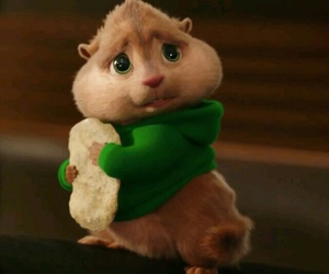 adorable, chipmunks, and chubby image