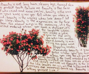 bloom, diary, and flowers image