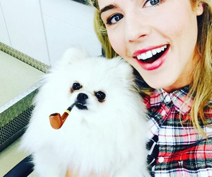 arrow, felicity smoak, and dog image