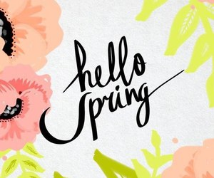 spring, wallpaper, and flowers image