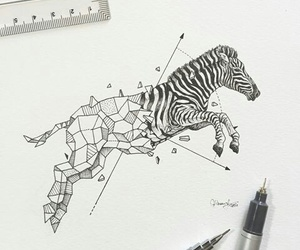 zebra, art, and drawing image