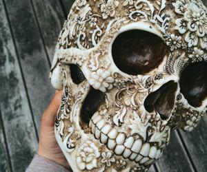 skull, art, and flowers image
