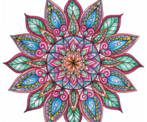 beautiful, colored, and mandalas image