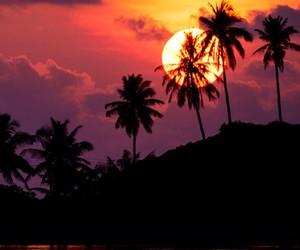 sky, sun, and sunset image