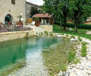 natural pool and swimming ponds image