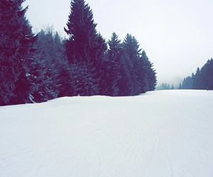 ski, snowboard, and white image
