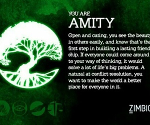 amity, insurgent, and divergent image