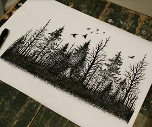 art, cool, and forest image