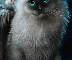 cat, mouse, and wallpapers image