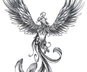 phoenix and tattoo image