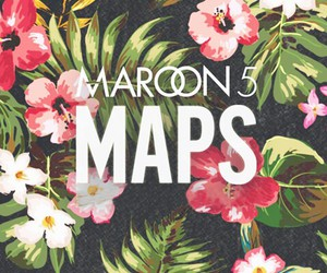 flowers, map, and maroon 5 image