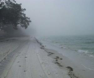 beach, grunge, and sea image