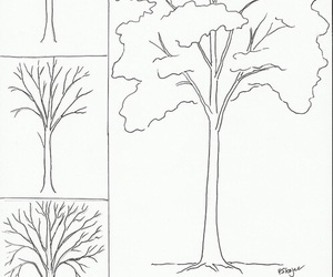 drawing and tree image
