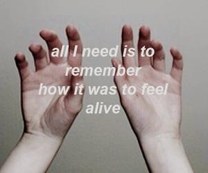 quote, tumblr, and aurora image