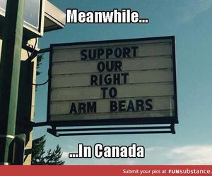 awesome, canada, and funny image
