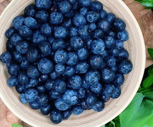 healthy, blueberries, and food image