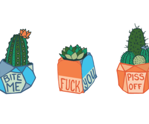 art, quote, and cactus image