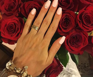 nails, roses, and style image