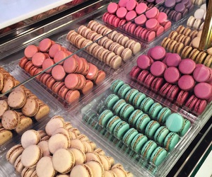 ‎macarons, food, and laduree image