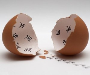 egg, funny, and Chicken image