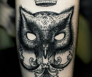 arm, owl, and tattoo image