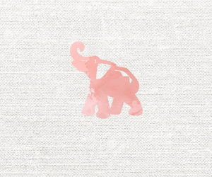 elephant, simple, and rose gold image