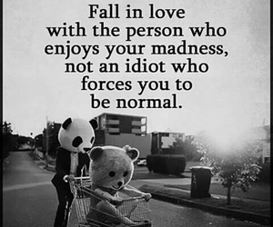 love, quotes, and madness image