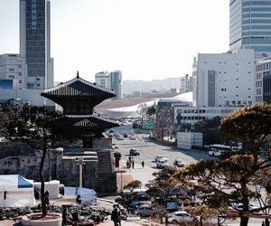 asia, gray, and korea image