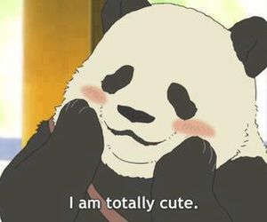 panda, cute, and anime image