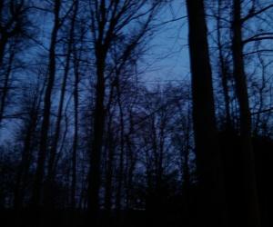 alone, cold, and dark image