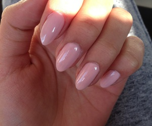girly, long, and nails image