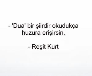 türkçe sözler and reşit kurt image