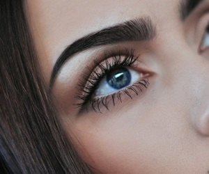 eyes, makeup, and eyebrows image