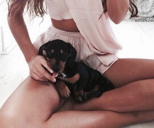 aesthetic, fashion, and puppy image