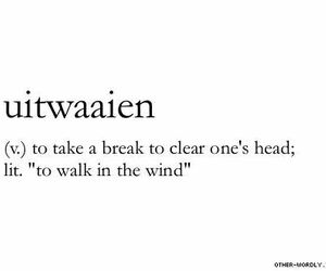 dutch, quotes, and wind image