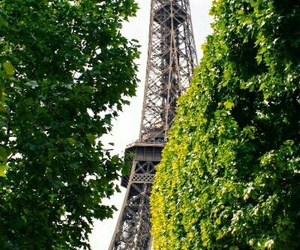 eiffel tower, travel, and greenery image