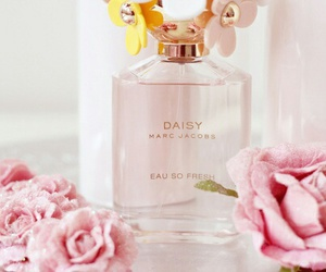 pink, perfume, and daisy image