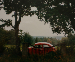 car, tree, and vintage image