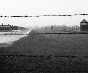 auschwitz, holocaust, and Poland image