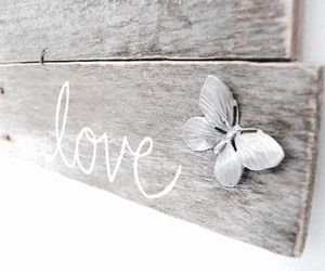 love and butterfly image