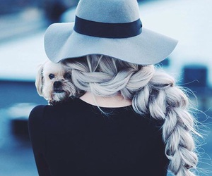 hair, dog, and hat image