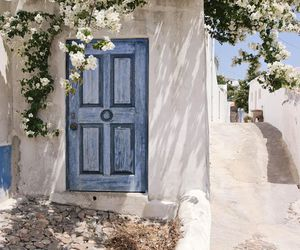travel, door, and flowers image