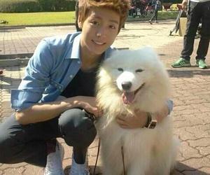 lee hyun woo, to the beautiful you, and hyunwoo image