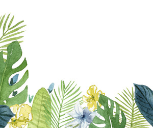 background, tropic, and leaves image