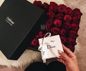 dior and rose image
