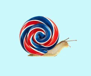 art, minimalism, and snail image