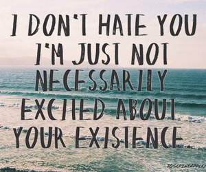 quote, hate, and excited image