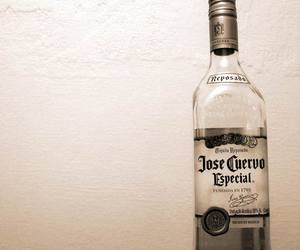 drunk, tequila, and jose cuervo image
